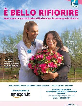Airc torna in piazza domenica 9 maggio con l'Azalea per sostenere la ricerca sui tumori
