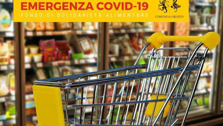 """COVID-19: Aperta la Fase 4 di assegnazione dei """"Buoni Spesa"""" riferiti a Decreto """"Ristori Ter"""""""