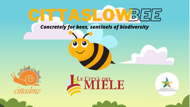 """Presentato """"CittaslowBee"""" Manifesto di Cittaslow International a sostegno delle api e a tutela della biodiversità"""